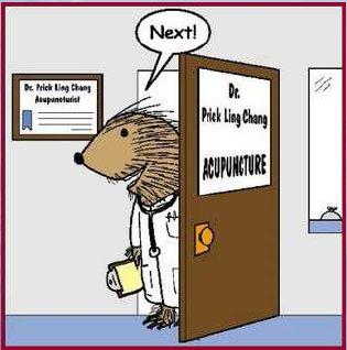 """Résultat de recherche d'images pour """"acupuncture humour"""""""