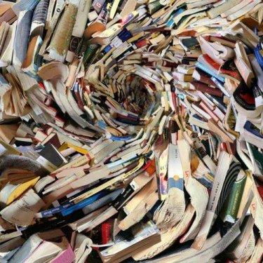 Alicia Martin's Amazing Book Sculptures