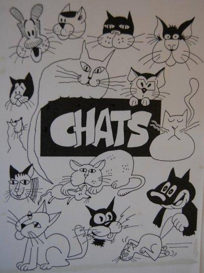 Chats 01