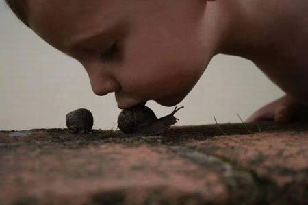 Mimi escargot