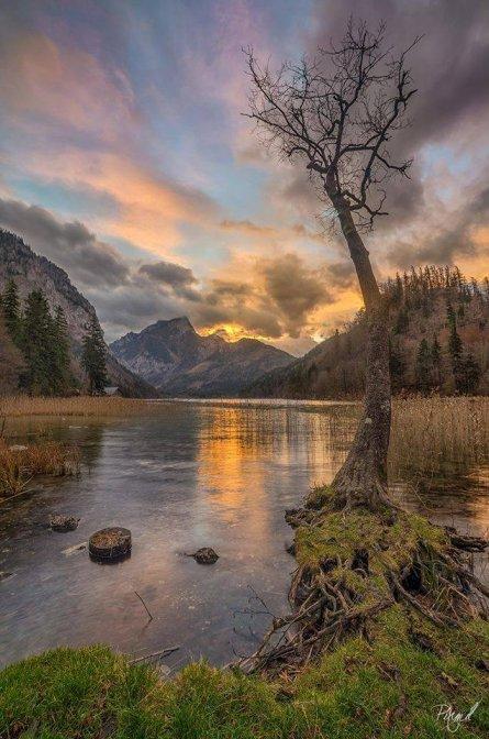 Austria - by Pixmil Lexa AM