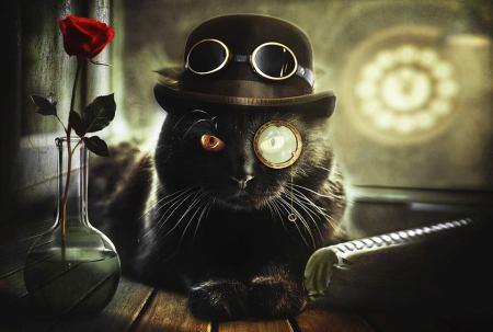 Steamcat by Evgeny Morozov