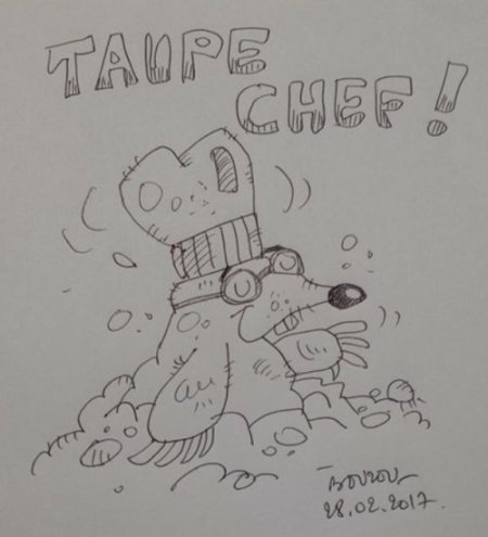 taupe-chef