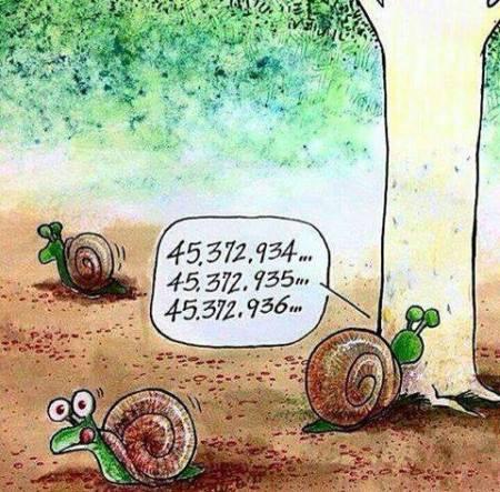 [Image: cache-cache-chez-les-escargots.jpg?w=450&h=443]